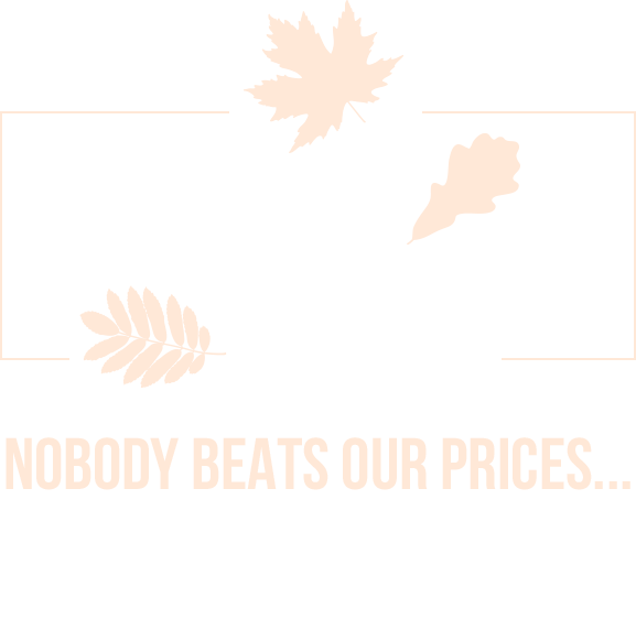 Falling Savings at Wholesale Manufactured Homes
